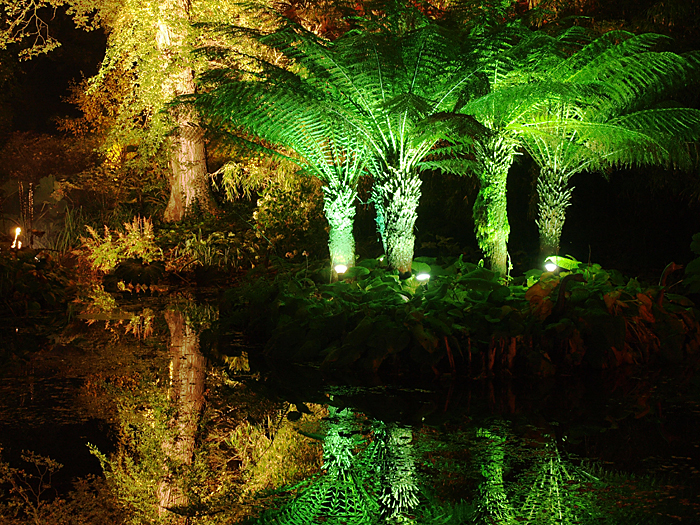 Abbotsea Gardens Christmas 2009